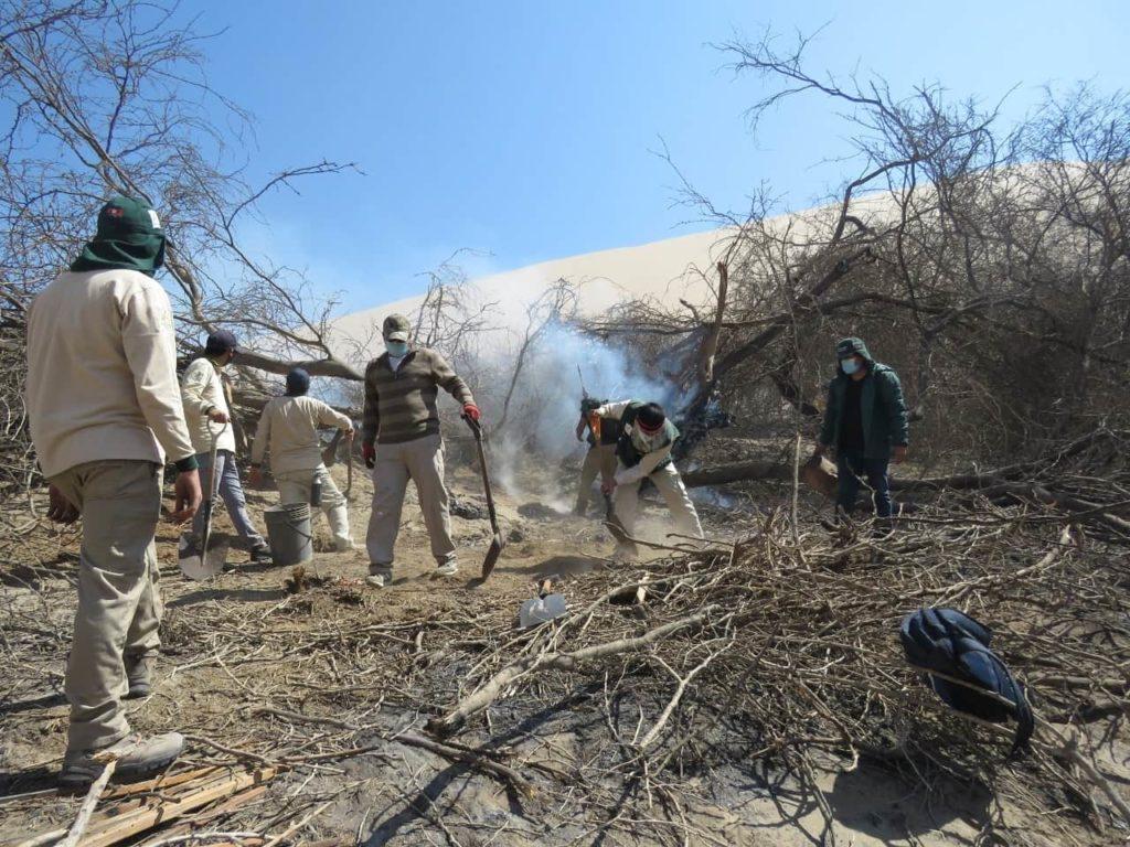 Incendio forestal en Orovilca